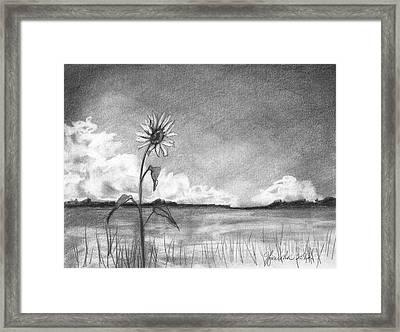 Sunflower Cloud Framed Print