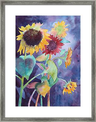 Framed Print featuring the painting Sunflower Color by Nancy Jolley