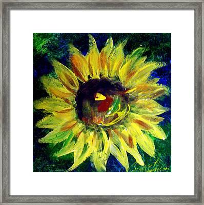 Sunflower  Framed Print by Cynthia Hudson