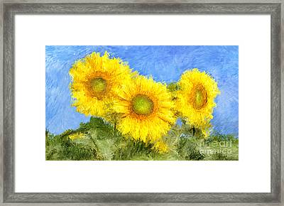 Sunflower Flowers Painting Framed Print by Giuseppe Persichino
