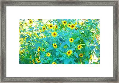 Sunflower Forest Framed Print