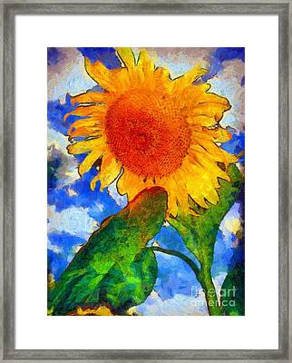 Sunflower - From Heaven Above Framed Print by Janine Riley