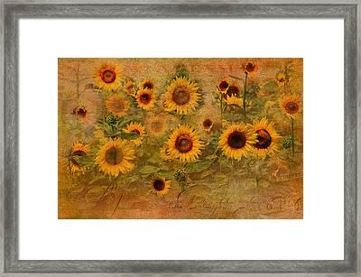 Sunflower Garden Framed Print