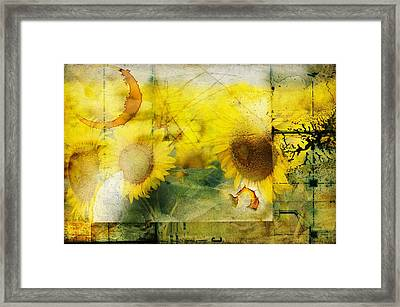 Framed Print featuring the photograph Sunflower Grunge by Kathy Churchman