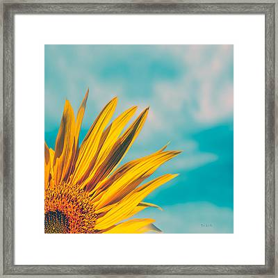 Sunflower In The Corner Framed Print