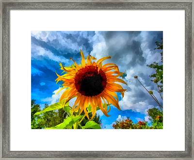 Sunflower Inspiration Framed Print
