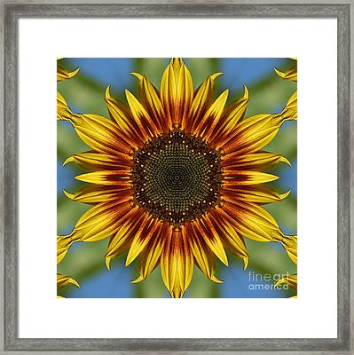 Sunflower Kaleidoscope Framed Print by Cindi Ressler
