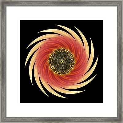 Sunflower Moulin Rouge Vii Flower Mandala Framed Print