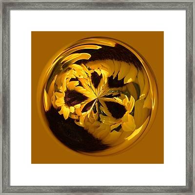 Sunflower Orb Framed Print by Paulette Thomas