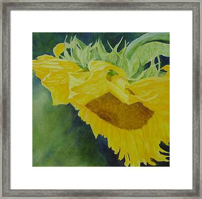Sunflower Original Oil Painting Colorful Bright Sunflowers Art Floral Artist K. Joann Russell  Framed Print