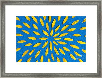 Sunflower Petals Pattern Framed Print