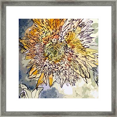 Sunflower Prickly Face Framed Print