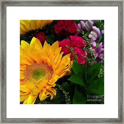 Sunflower Reflections Framed Print