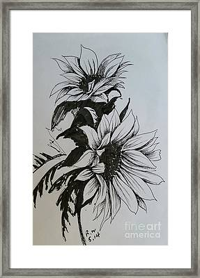Framed Print featuring the drawing Sunflower by Rose Wang