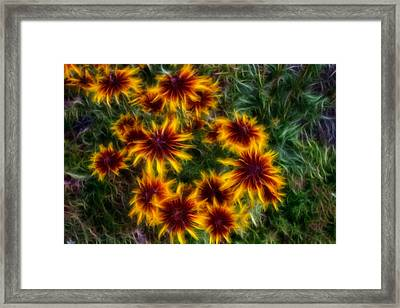 Sunflower Saturation Framed Print by Omaste Witkowski