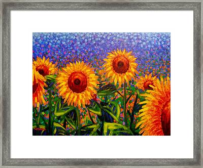 Sunflower Scape Framed Print by John  Nolan