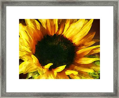 Sunflower Shadow And Light Framed Print by Susan Savad