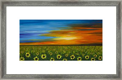 Sunflower Sunset - Flower Art By Sharon Cummings Framed Print by Sharon Cummings