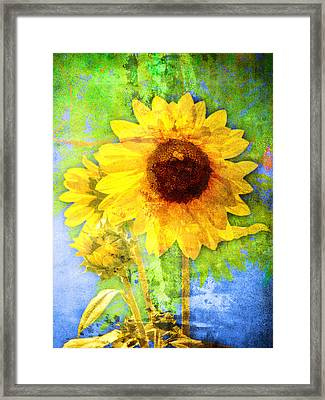 Framed Print featuring the photograph Sunflower With Bee Number Fourteen by Bob Coates