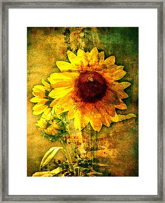 Framed Print featuring the photograph Sunflower With Bee Number Ten  by Bob Coates