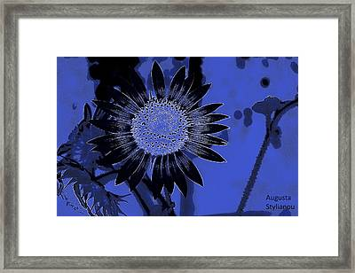 Sunflowers At Night Framed Print by Augusta Stylianou