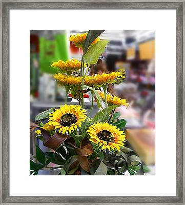 Sunflowers At The Market Florence Italy Framed Print