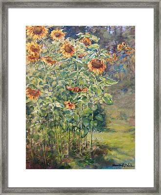 Sunflowers At Watermelon Farm Framed Print by Sharon Jordan Bahosh