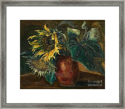 Sunflowers Framed Print by Celestial Images
