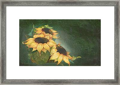 Sunflowers Framed Print by Doreta Y Boyd