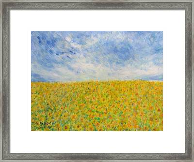 Sunflowers  Field In Texas Framed Print
