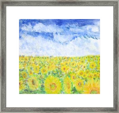 Sunflowers In A Field In  Texas Framed Print by Glenda Crigger