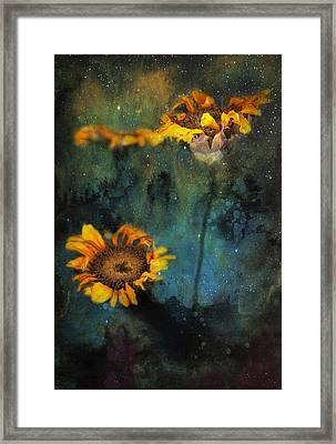 Sunflowers In Night Sky Framed Print by James Bethanis