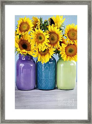 Sunflowers In Painted Mason Jars Framed Print by Stephanie Frey