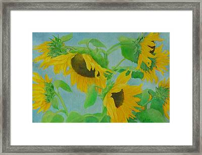 Sunflowers In The Wind 2 Framed Print by K Joann Russell