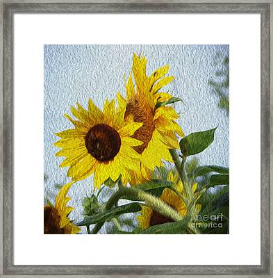 Framed Print featuring the photograph Sunflowers Of The East by Ecinja Art Works