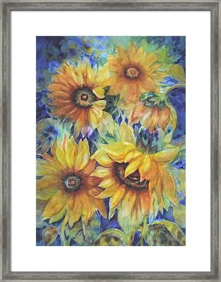 Sunflowers On Blue Framed Print by Ann Nicholson