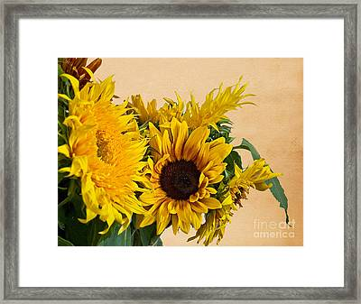Sunflowers On Old Paper Background Art Prints Framed Print