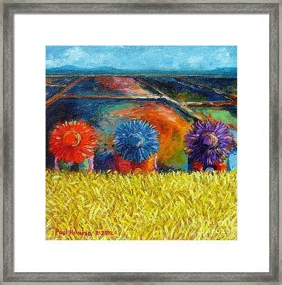 Sunflowers Framed Print by Paul Hilario