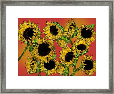 Sunflowers Framed Print by Robert Ashbaugh