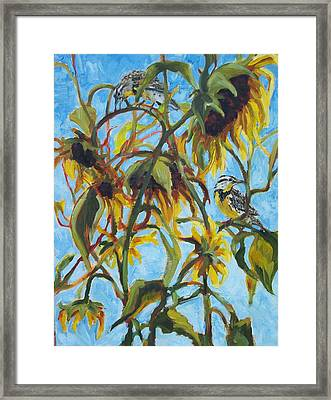 Sunflowers With Meadolark Framed Print by Susan Bell