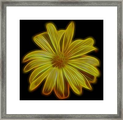 Sunglow Framed Print by Judy Vincent