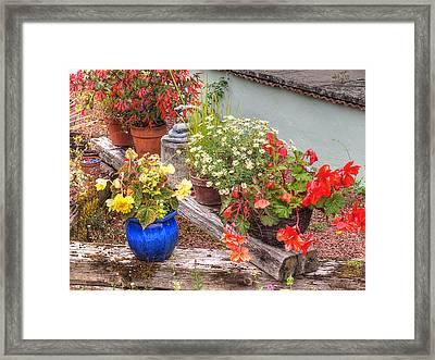 Sunken Kaleidoscope Garden Framed Print