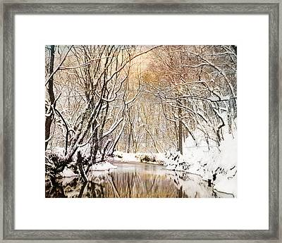Sunkissed Winter Creek Framed Print by Jai Johnson