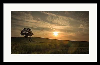 Tamworth Framed Prints