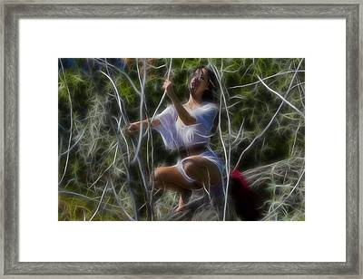 Sunlight And Branches Framed Print