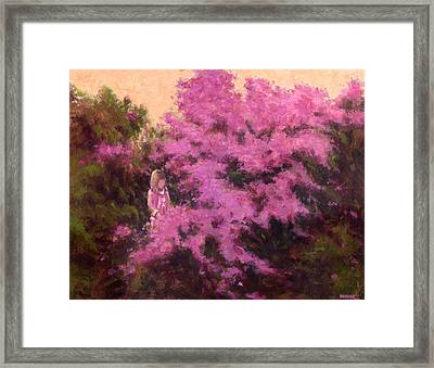 Sunlight And Shadow Framed Print by Vernon Reinike