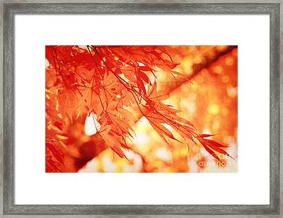 Sunlight Behind Vintage Autumn Leaves Framed Print by Beverly Claire Kaiya