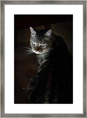 Sunlight Hits Only The Face Of A Male Framed Print