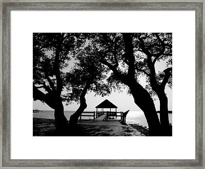 Sunlight On Currituck Sound Framed Print by Steven Ainsworth