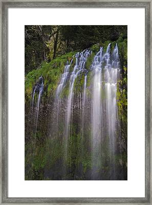 Sunlight On Mossbrae Framed Print